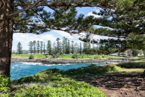 Storm-Bay-Kiama-with-the-KIama-Showground-opposite-surrounded-with-Norfolk-Island-Pine-trees-Image-Credit-Gerringong-Australia-Photography